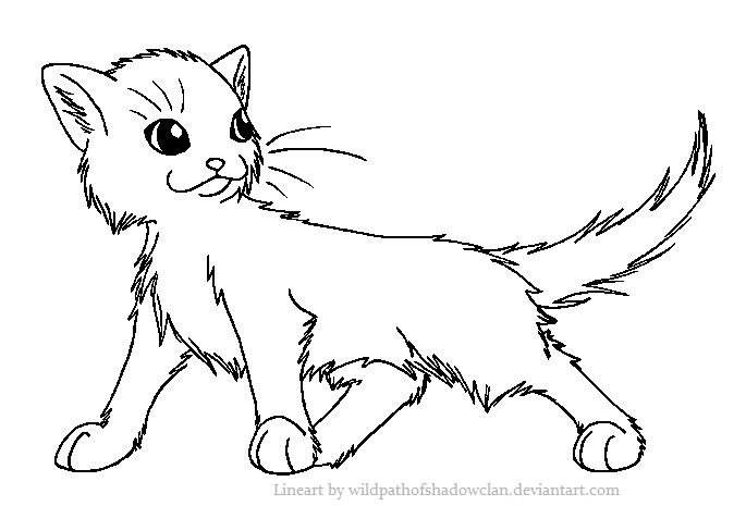 Long Haired Warrior Cat Coloring Page Warrior Cat Drawings Warrior Cat