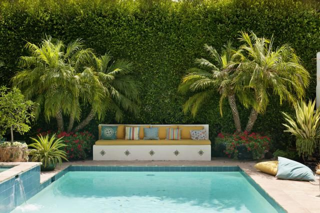 Photo of Poolside Plants That Look Like Paradise