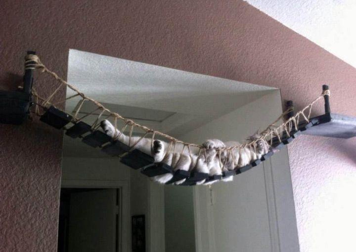 un pont suspendu pour faire dodo kitterkats cats pets cat furniture. Black Bedroom Furniture Sets. Home Design Ideas