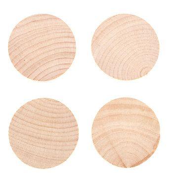 Birch Wood Circles 2 Puppets Wood Circles Wood Birch