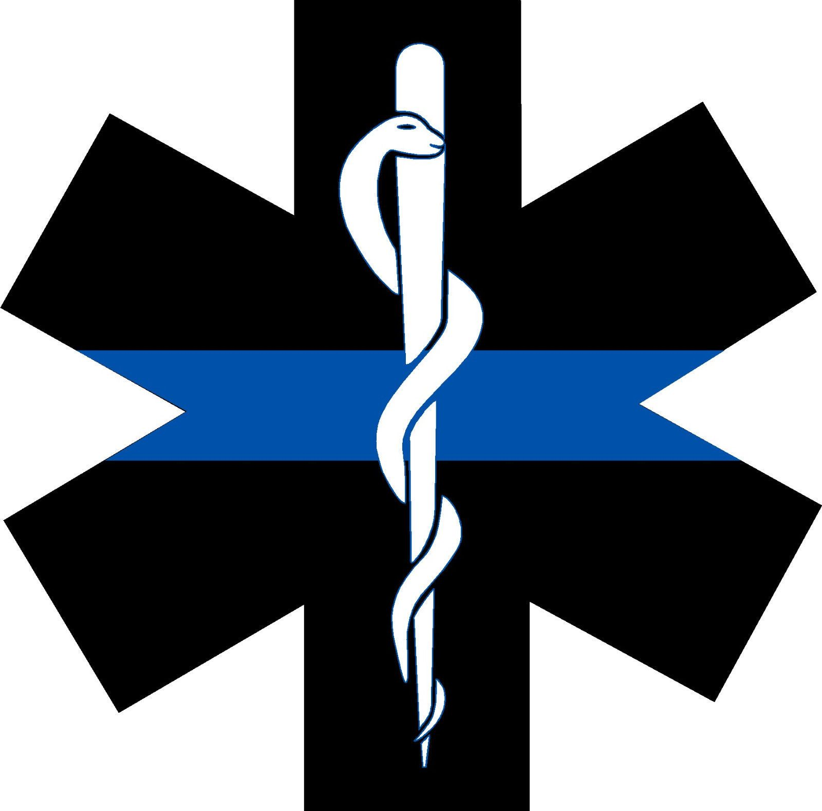nursing symbols vinyl decal with star of life and nurse cap sticker rh pinterest com Professional Caduceus U.S. Army Medical Caduceus