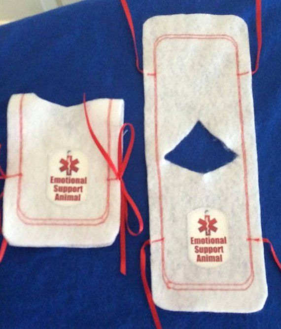 Emotional Support Animal Vest For Bearded Dragons. One