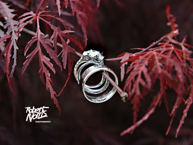 Great ring pic -