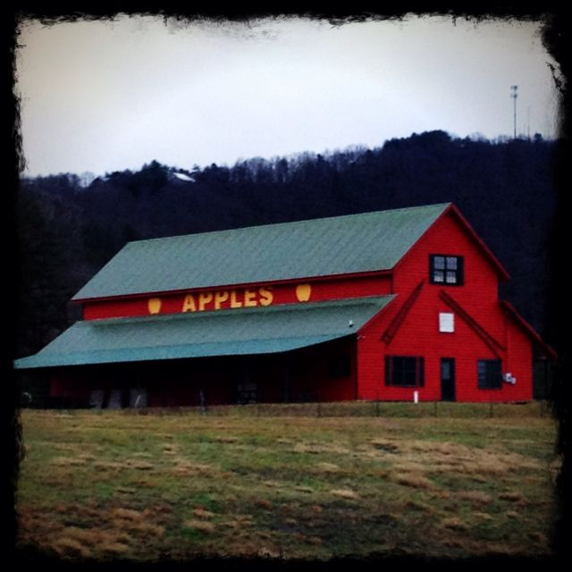 Apple house with Talona Mtn. In the background - Ellijay,GA