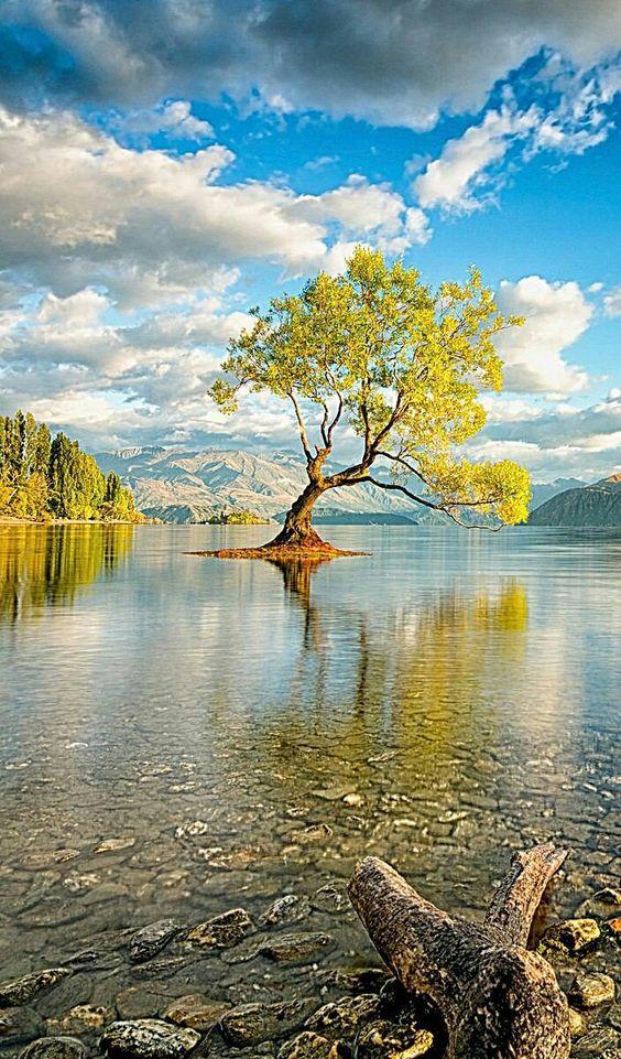 40 Romantic Waterscape Resources Landscape Is Fascinating Nature Photography Nature Photos Landscape