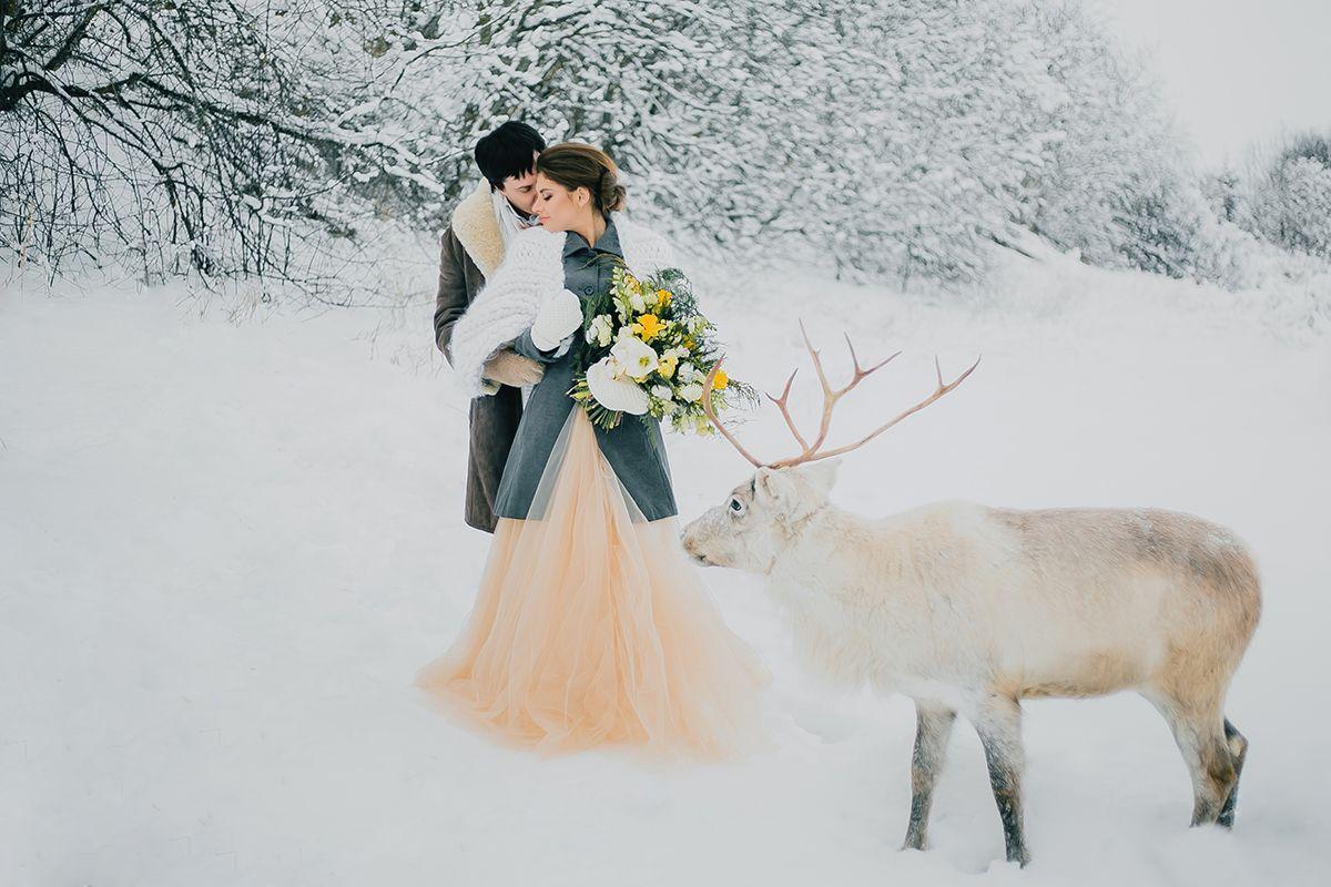 продажа свадебные фотосессии в питере зимой туристу, собравшемуся