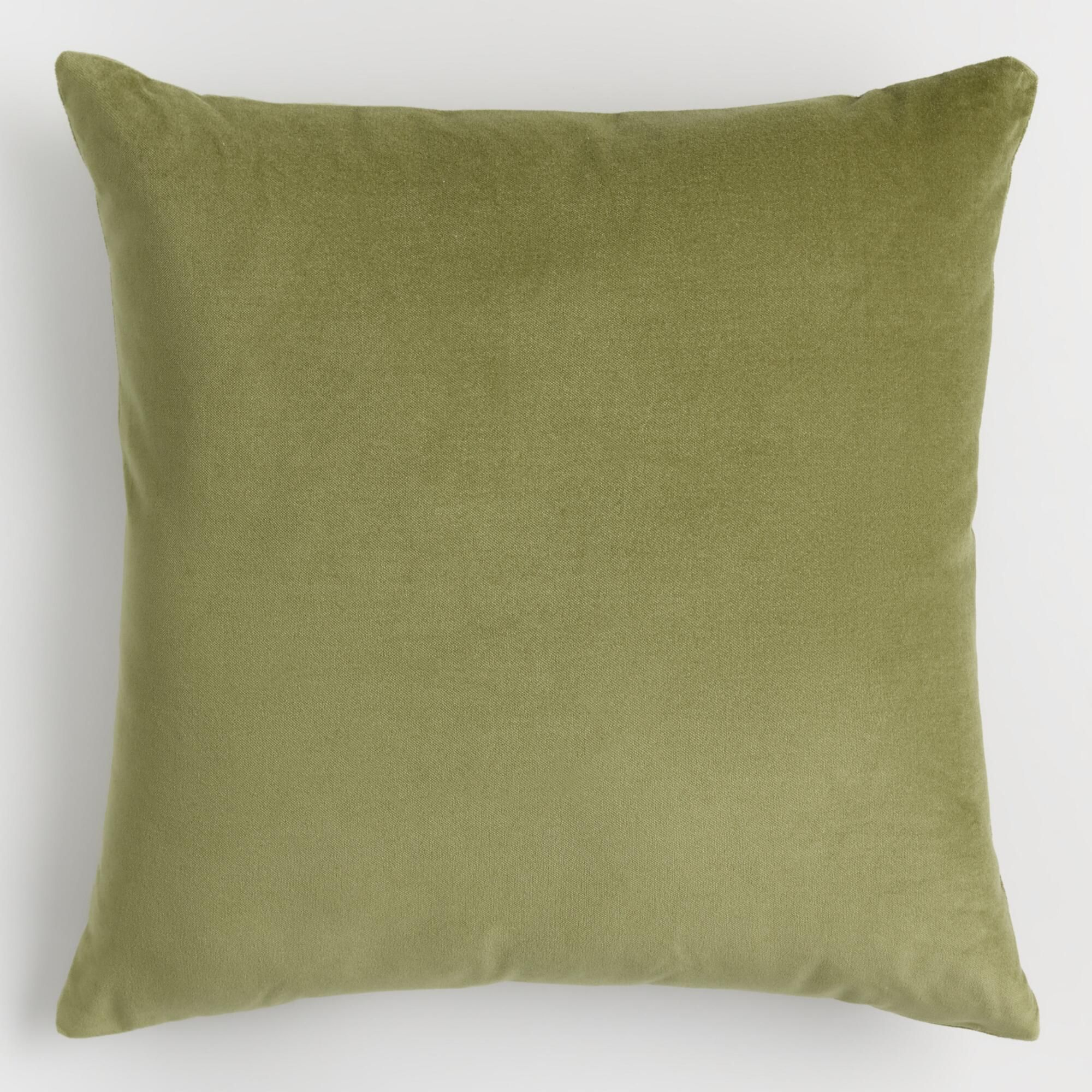 Light Green Velvet Throw Pillow By World Market Pillows