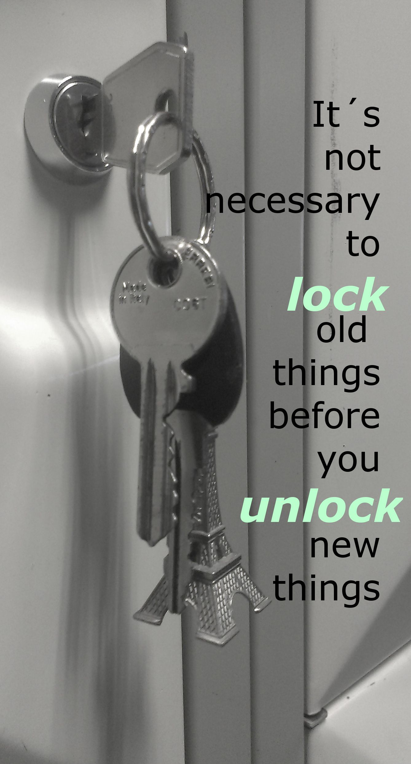 to lock or to unlock in 2020 (With images) Bathroom