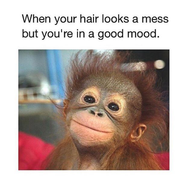 Hairstylesbeauty Tag Your Bff Makeup With Images Funny