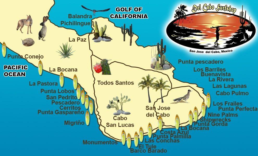 See T Shirt Pins Cassurf Top Cabo Surf Spots Baja California