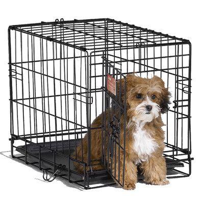 iCrate Single Door Pet Crate