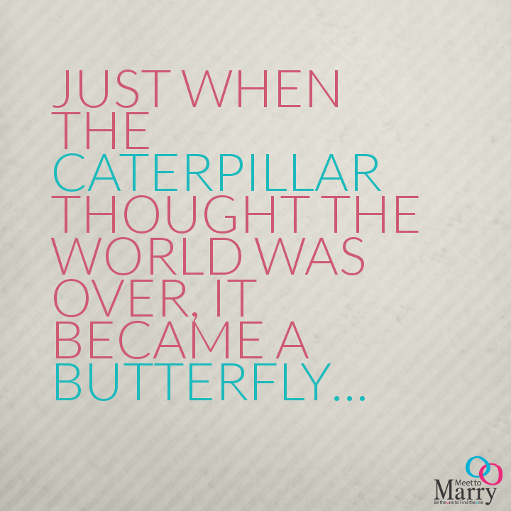 Don't give up you too can become a butterfly