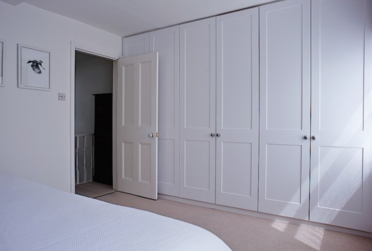Master bedroom hallway  Could we do this in guest bedroom against the south wall  wardrobe