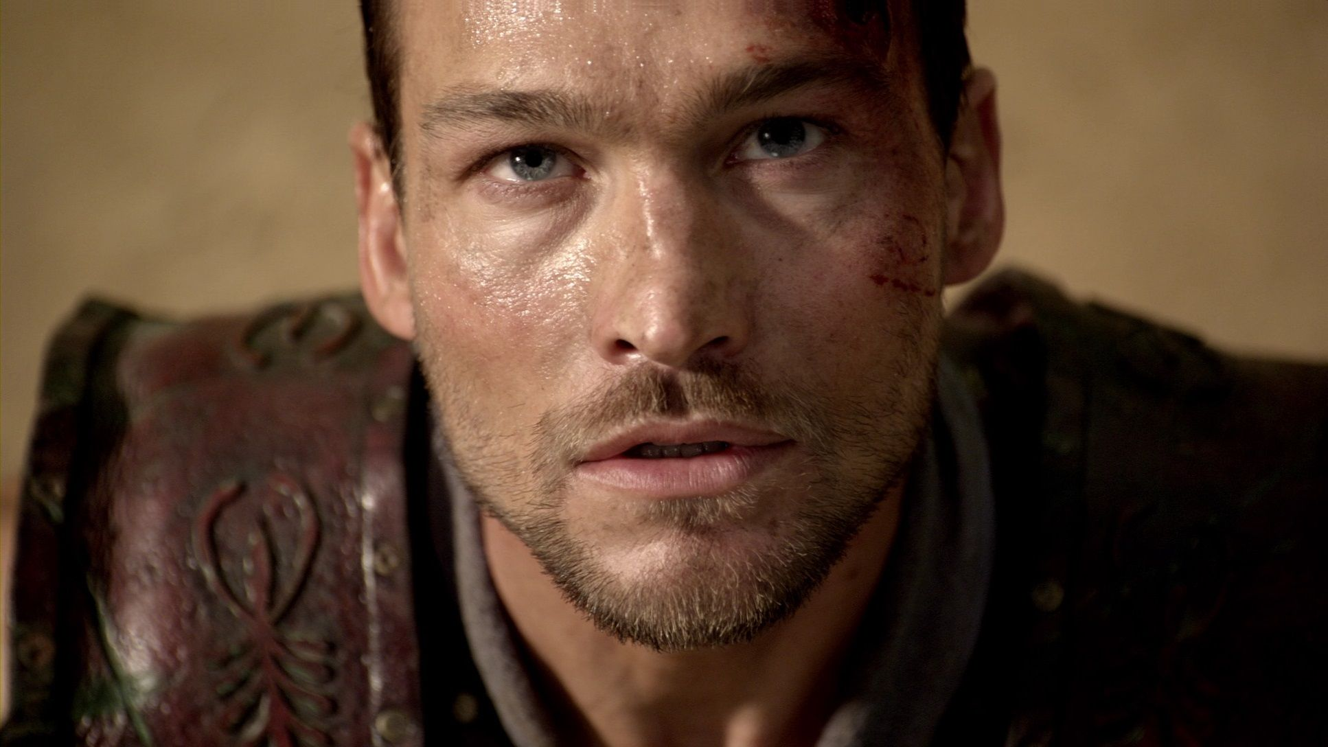 andy whitfield i am spartacus