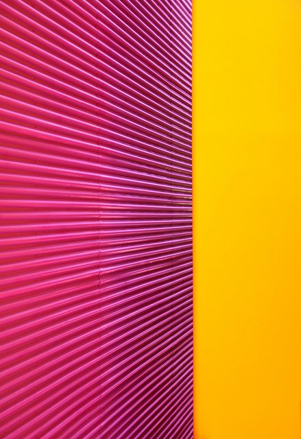 Pink and Yellow 2 | Flickr - Photo Sharing!