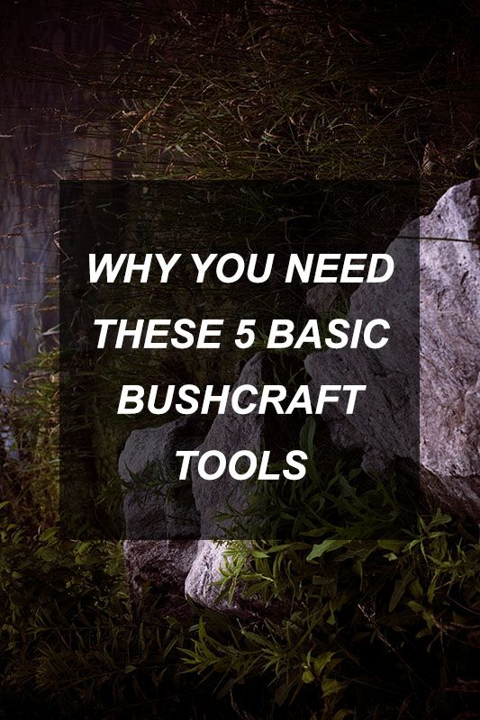 Why You Need These 5 Basic Bushcraft Tools