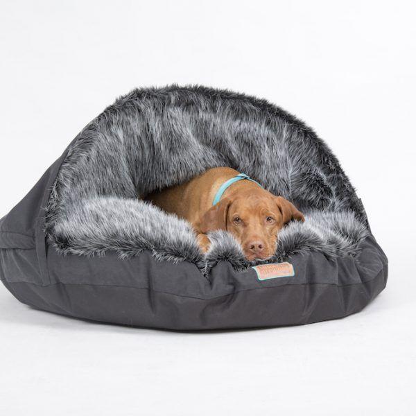 snuggle dreamer captain fluffy hunde