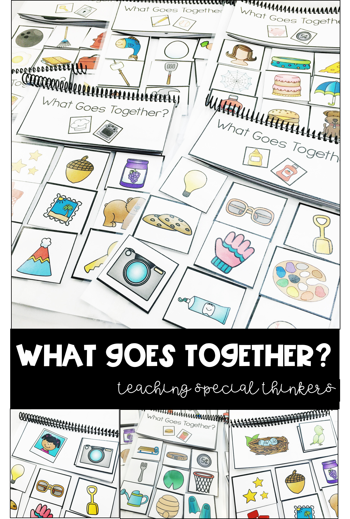What Goes Together Association Flipbooks In With