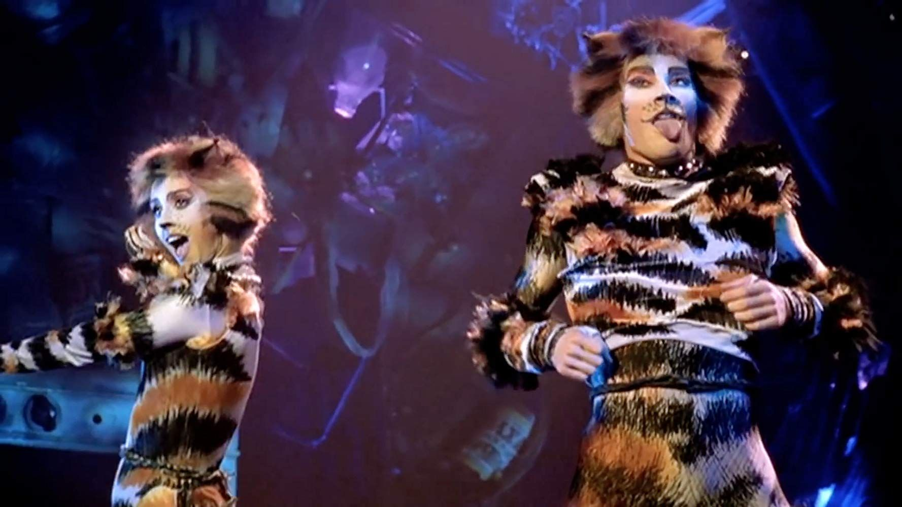 Cats (1998) in 2020 Cats musical, Jellicle cats