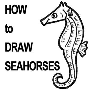 How to Draw Seahorses with Step by Step Cartoon Drawing