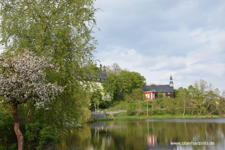 Stieger See im Frühjahr mit Blick auf die Kirche und das Stieger Schloss.