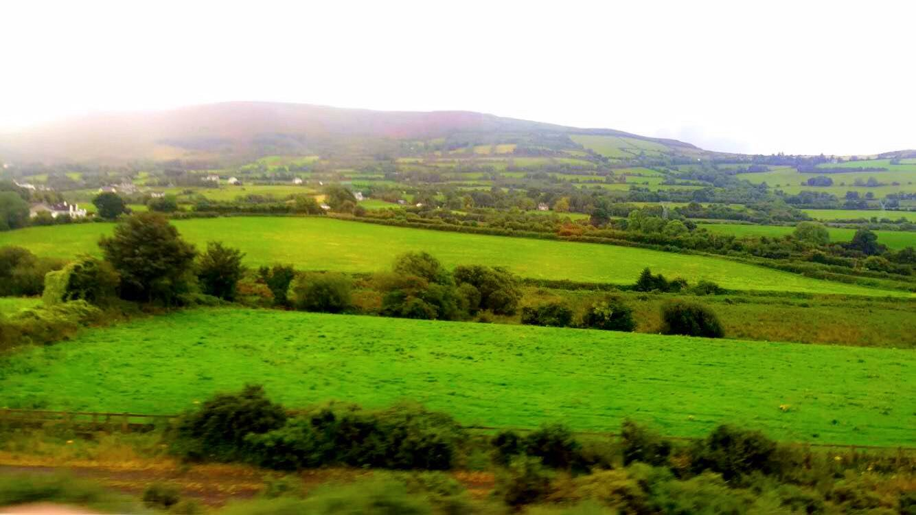 Ireland countryside 🍀 (With images) Countryside, Dublin