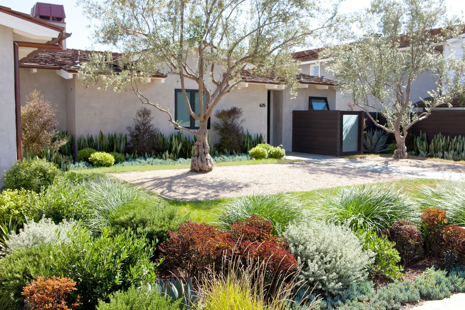 California Landscape Lush With Less Water Www Mollywoodgardendesign Com Garden In The Woods Landscape Design Garden Landscape Design