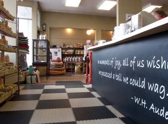 Love The Idea Of A Quote On The Front Desk Dog Grooming Shop Dog Grooming Salons