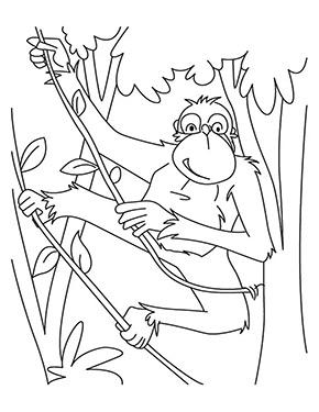 ausmalbild affe im wald   ausmalen, ausmalbilder tiere