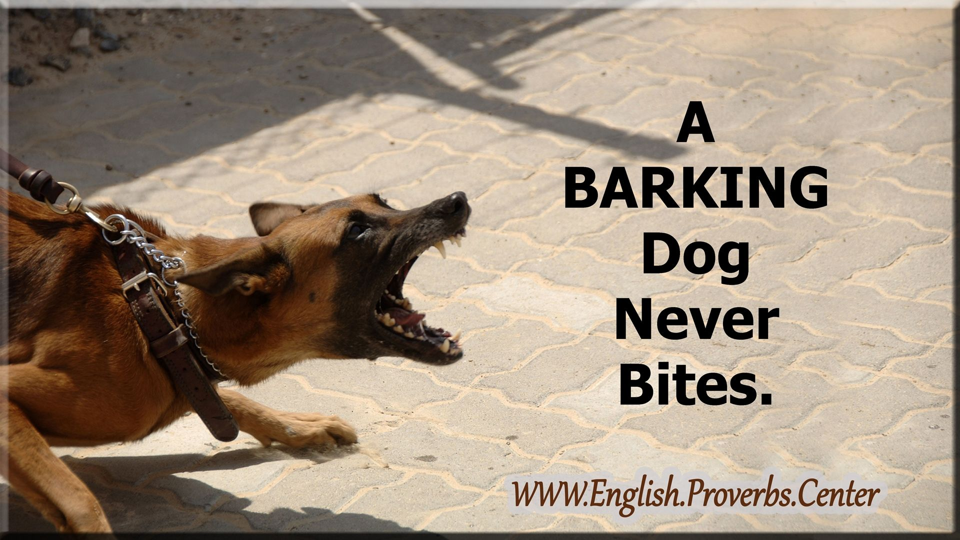 Meaning Of A Barking Dog Never Bites