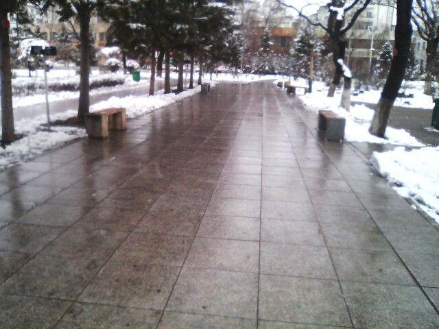 濕漉漉的公園 o(︶︿︶)o