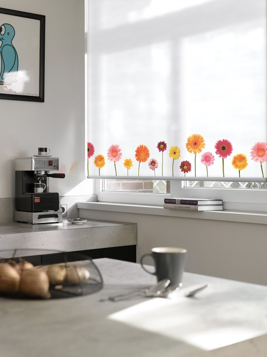 expressions roller blind fun design add a punch of colour to the