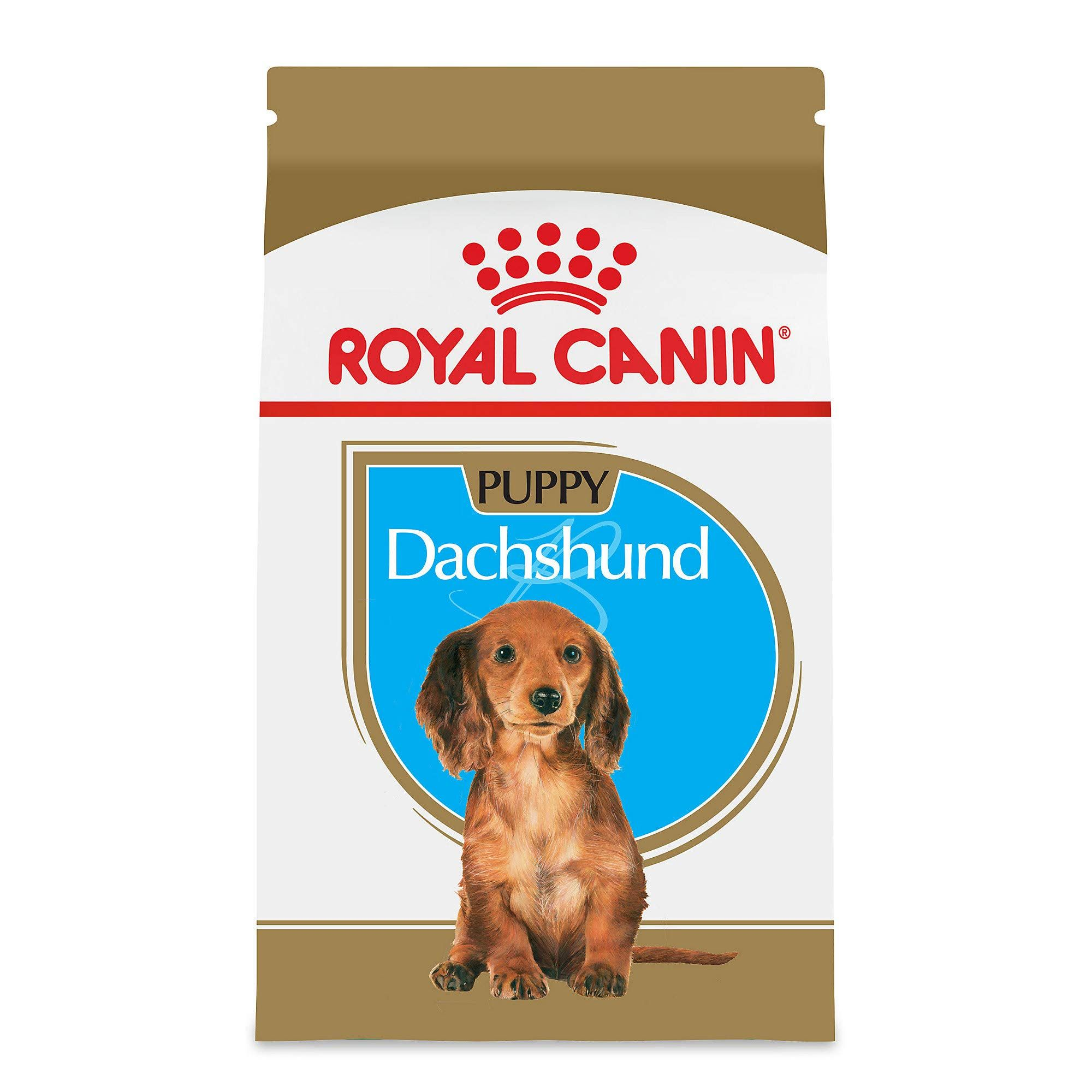 Royal Canin Breed Health Nutrition Dachshund Puppy Dry Dog Food Check Out This Great Product Dogfood In 2020 Dry Dog Food Dachshund Puppy Dog Food Recipes