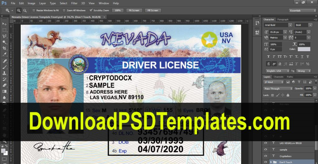 Drivers License in 2020 Drivers license, Psd templates