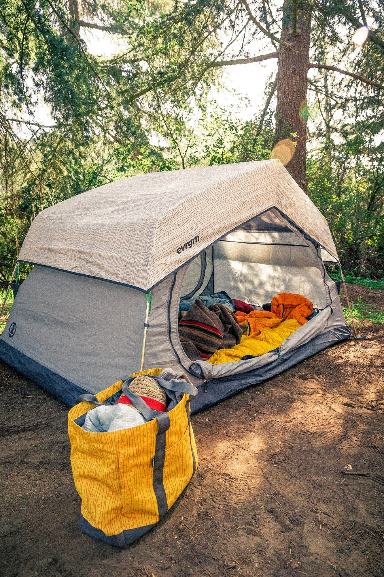 evrgrn Starry Night 2P Tent | REI Co-op | Tent, Tent ...