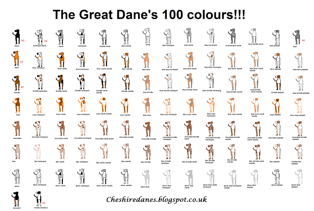 Cheshire Danes The Great Danes 100 Colors Chart Hawksley