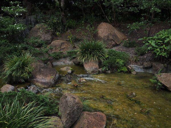 Morikami Japanese Garden Palm Beach County Florida