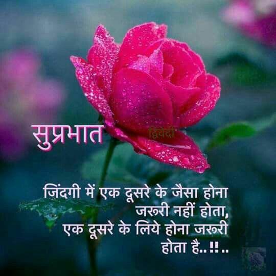 Pin by daljeetkaurjabbal on Hindi qoutes n   Good morning