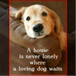 Golden Retriever A House Is Never Lonely Postcard | Zazzle.com