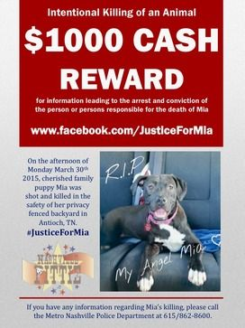 Please Help Us Find Justice For Mia Antioch Tennessee April 5