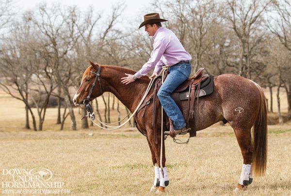 breaking the quit horse