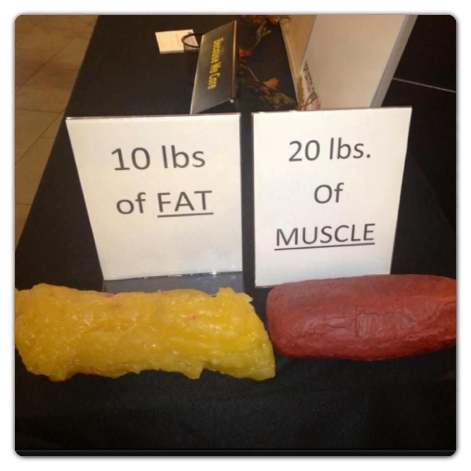 What 10 pounds of fat looks like vs. 20 pounds of muscle!