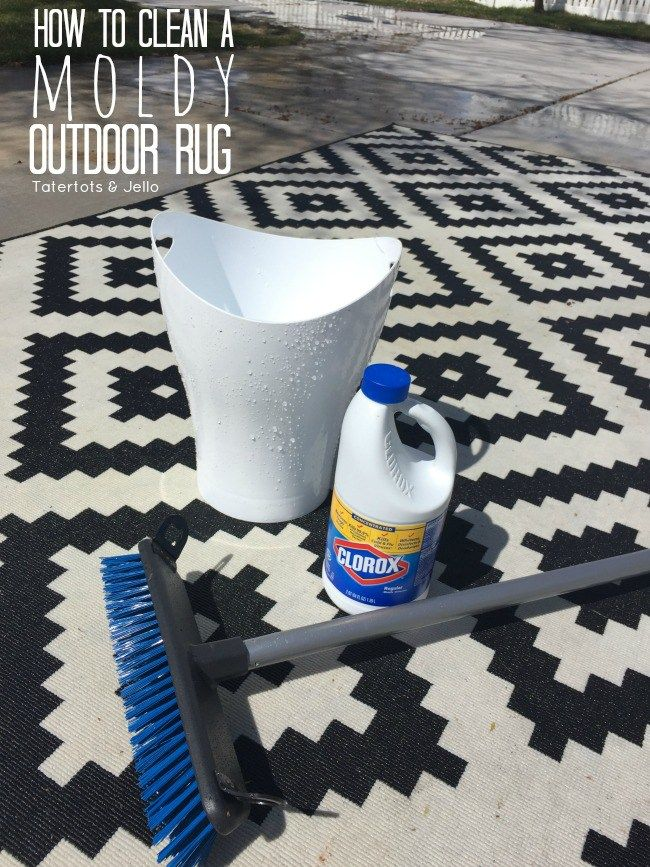 Clean A Moldy Rug Spring Cleaning Tips Indoor Outdoor Rugs And Diy Creative Ideas