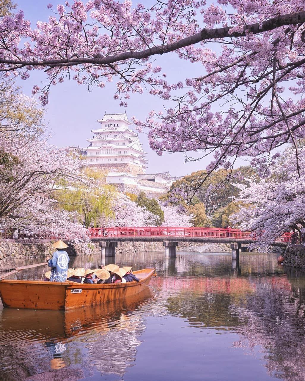 Beautiful Photos Capture The Magical Beginnings Of Japan S Cherry Blossom Season Wonderful Places Beautiful Places Beautiful Places To Visit