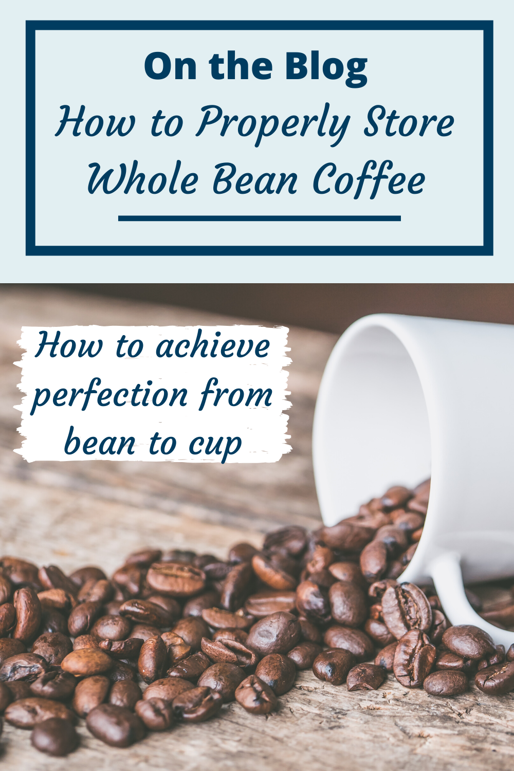 How To Properly Store Whole Bean Coffee In 2020 Coffee Beans Beans Aromas