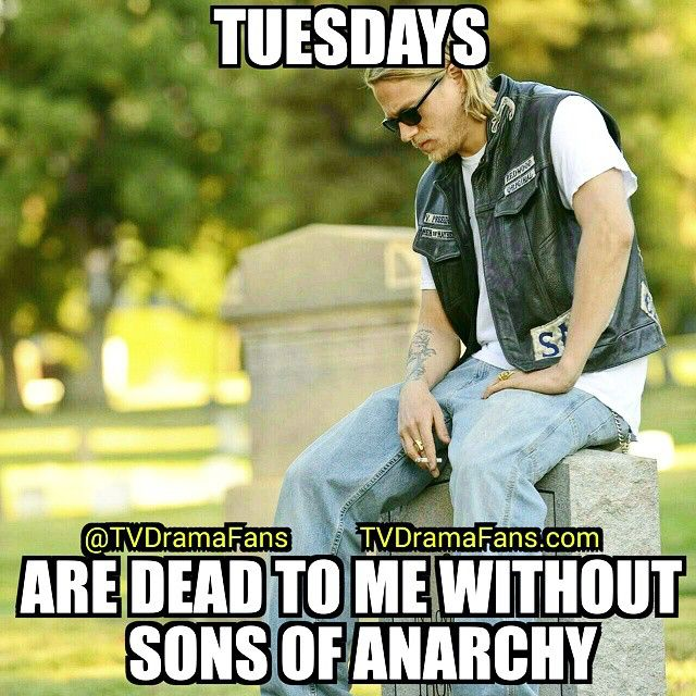 Missing Sons of Anarchy...