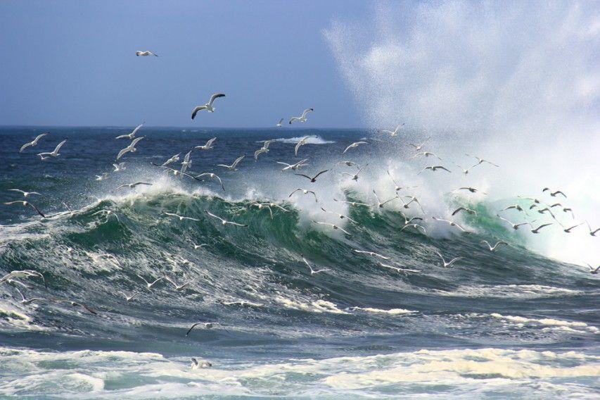 bruit de la mer bruit des vagues