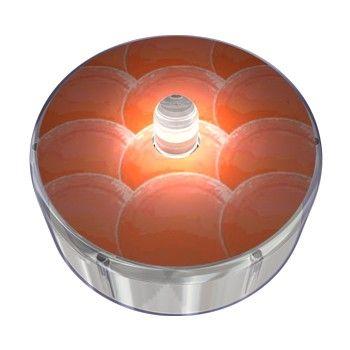Orange Party Dot Design 018