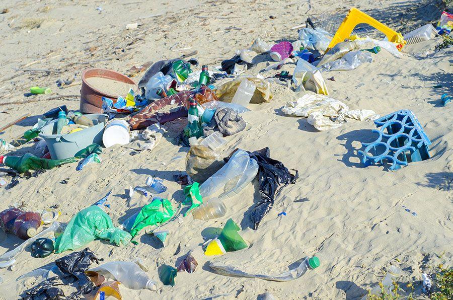 El primer envase de champú hecho con plástico reciclado procedente de las playas