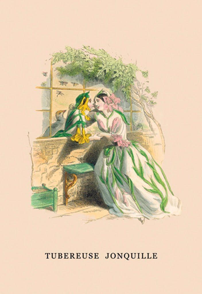 Tubereuse Jonquille, by J.J. Grandville